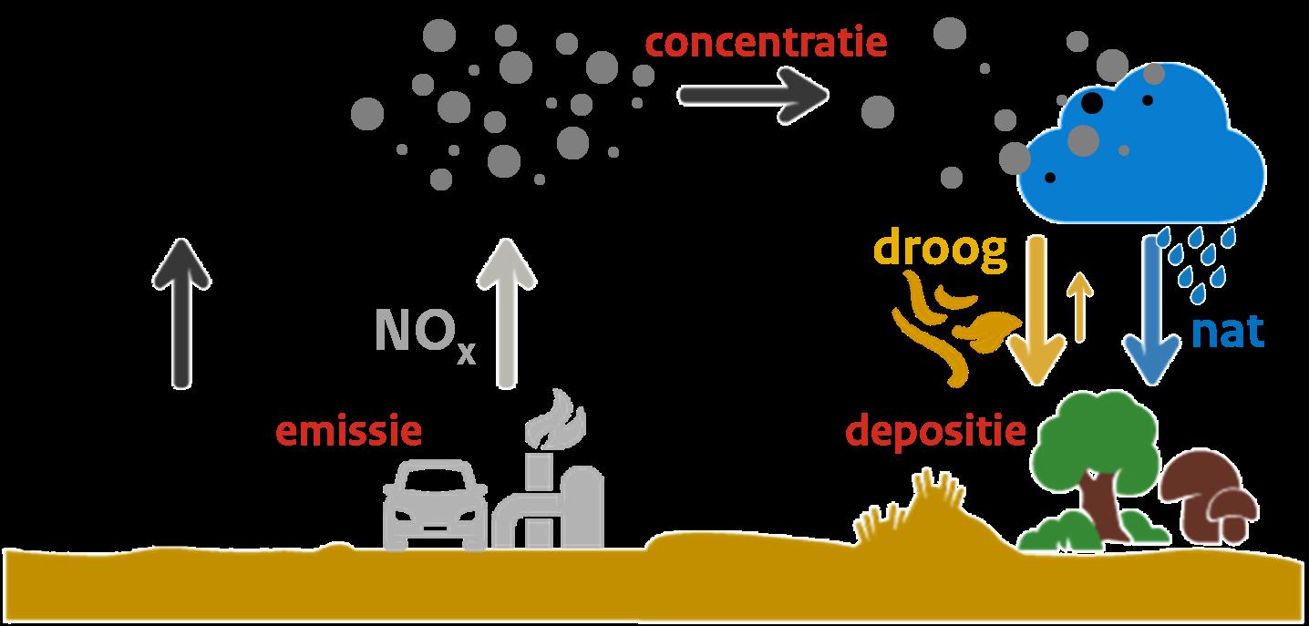 stikstof onderzoek wat is stikstofdepositie