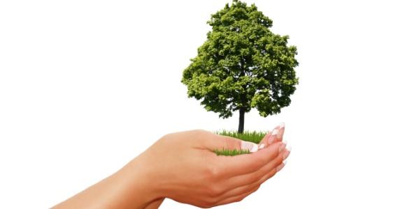 stikstofonderzoek.nl te veel uitstoot, toch een vergunning